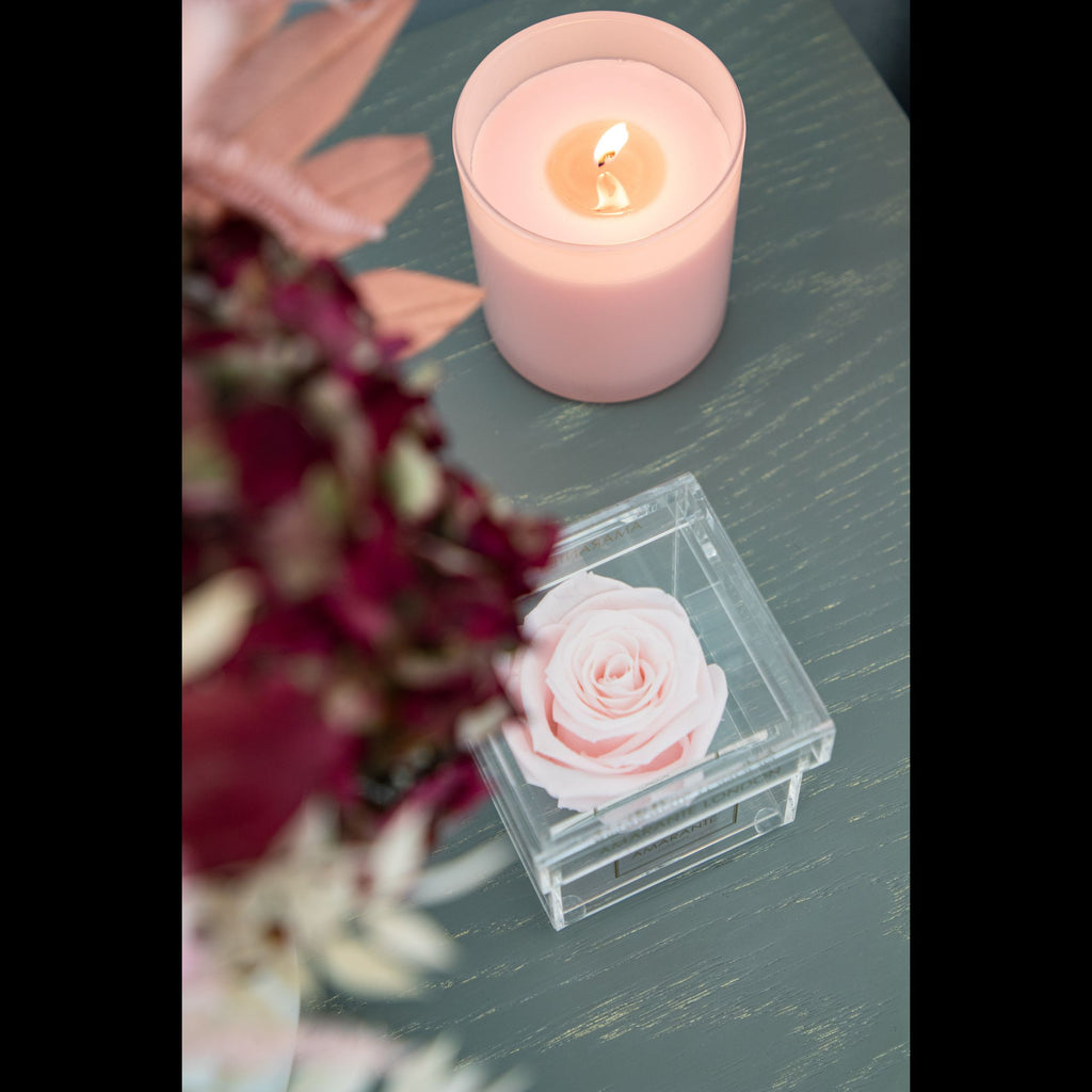 A tender pink Forever Rose in an intact jewellery acrylic box