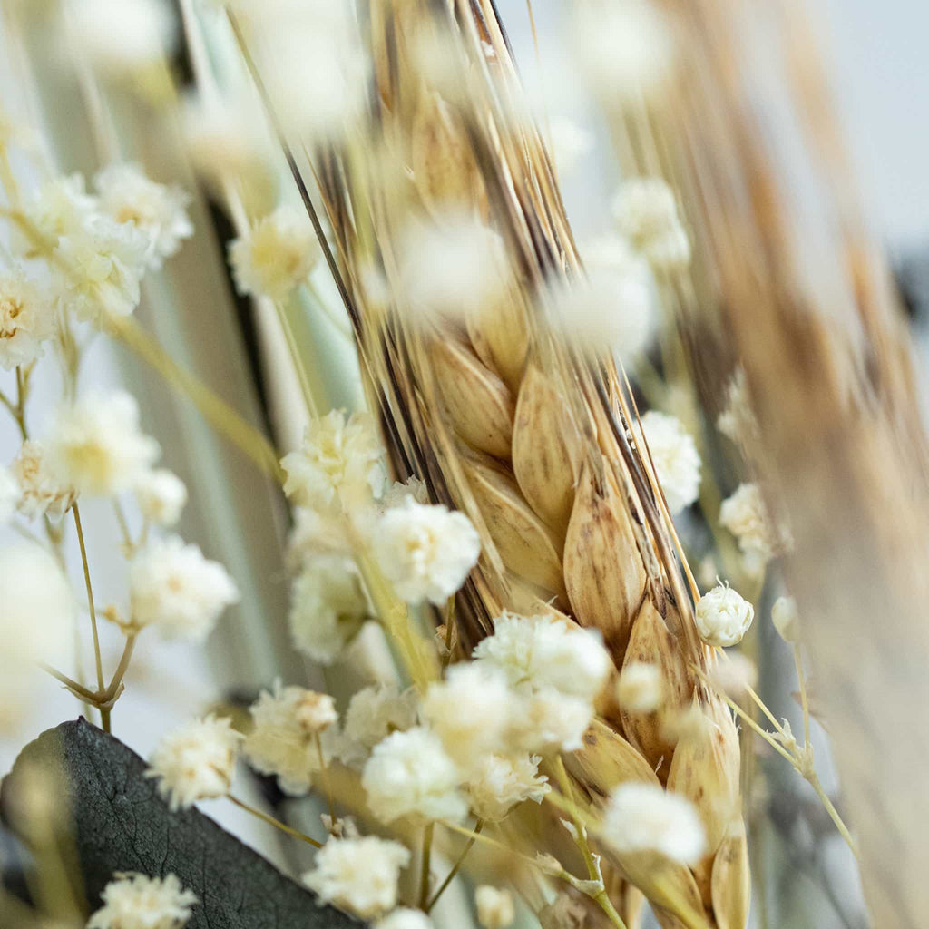 Detailed View of Dried Flowers
