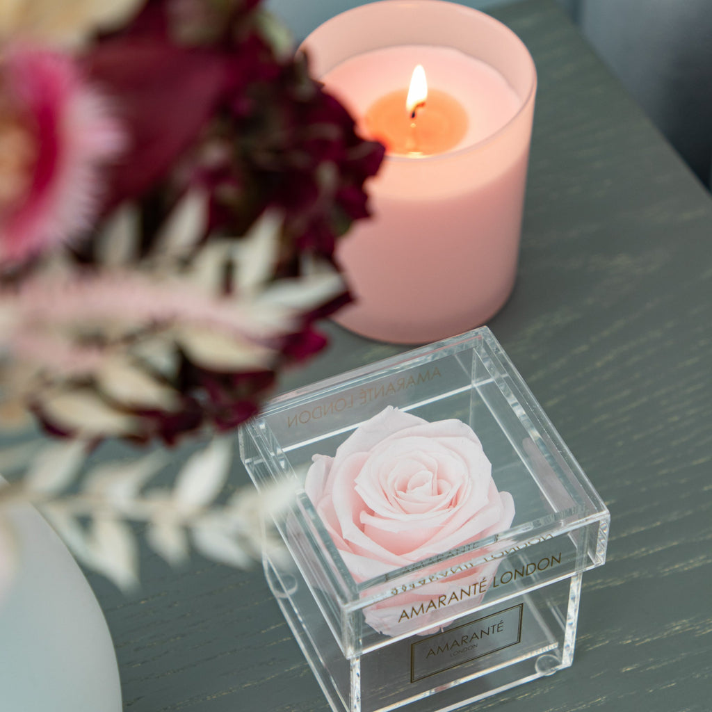 Single Pink Rose in Clear Box on a table with dried flowers and scented candle