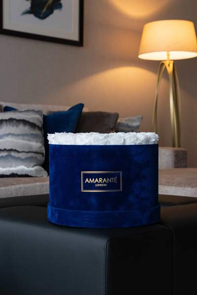 White Preserved Roses in royal blue suede hatbox