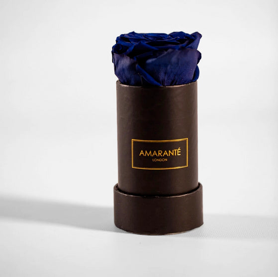 Single purple Preserved Rose in black round box