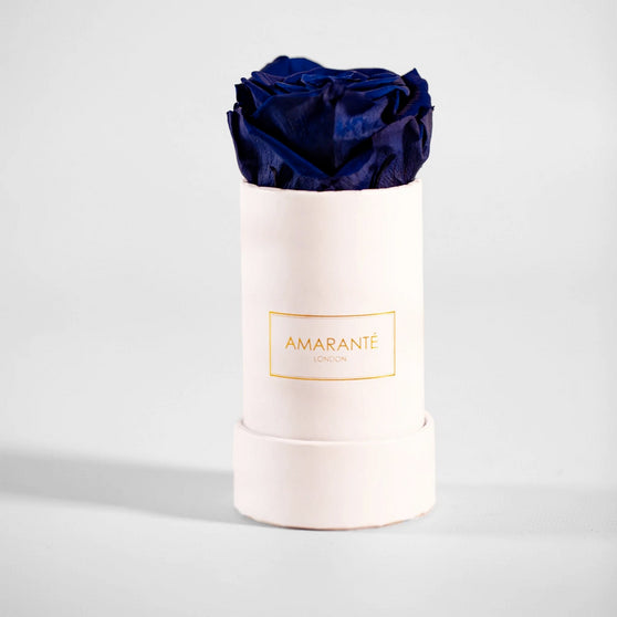 Single purple Preserved Rose in white round box