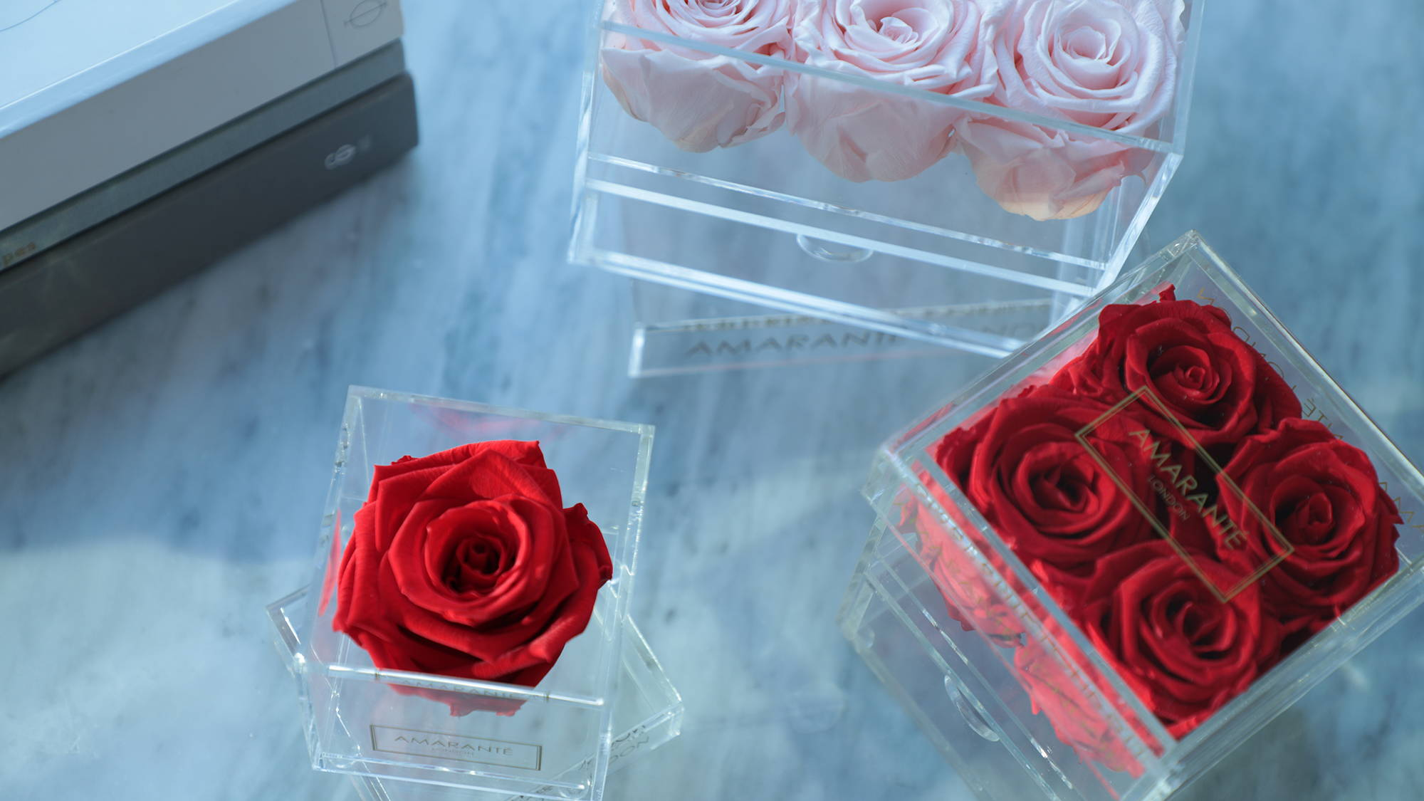 Forever Roses in jewellery box - different sizes