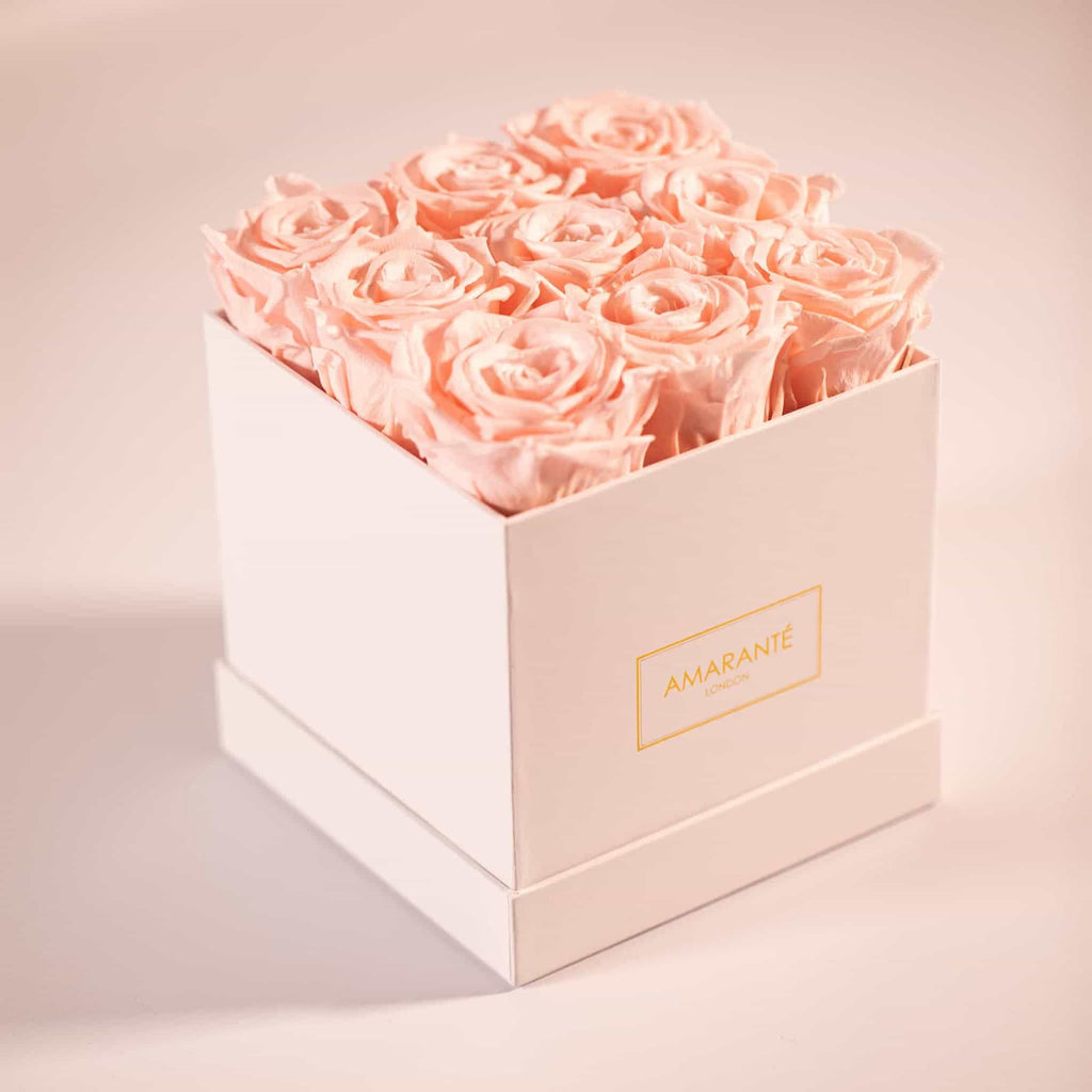 Infinity roses, Light pink