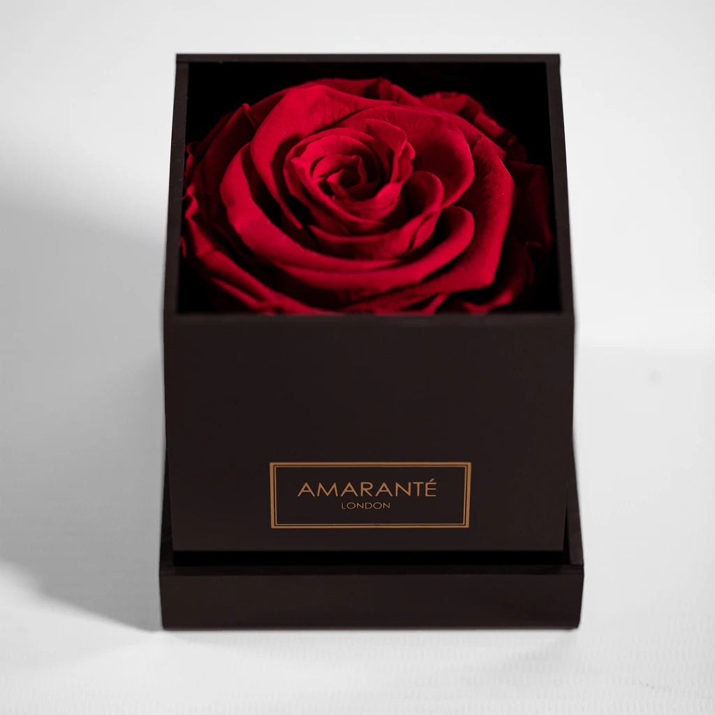 Single Red Forever Rose in an Black Acrylic Jewellery Organiser