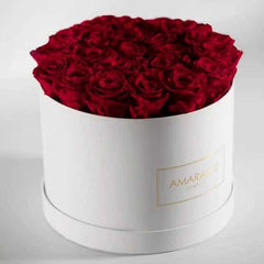 Red Roses in a Large White Hatbox - Amaranté London