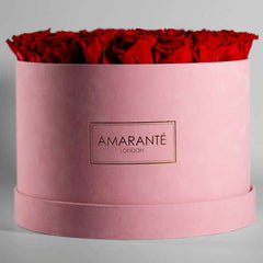 Red roses in a suede pink hatbox - Extra Large size