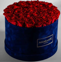 roses in a hatbox: large royal-blu with red roses