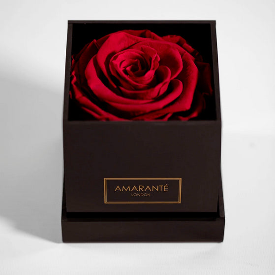 Red infinity rose in black acrylic gift box