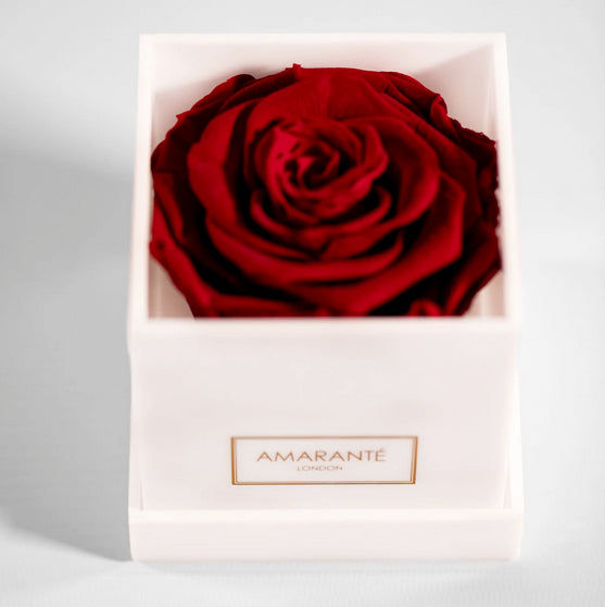 Red eternal rose in acrylic gift box