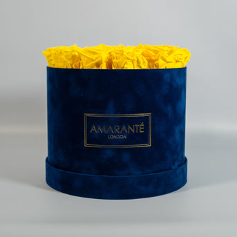 Red Roses in extra large blue suede hatbox