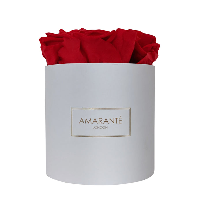 Small Round - White Box - Amarante London Roses