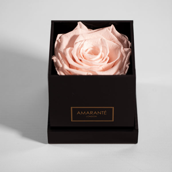 Infinity Roses in a Medium Round Hat Box - Pink Suede