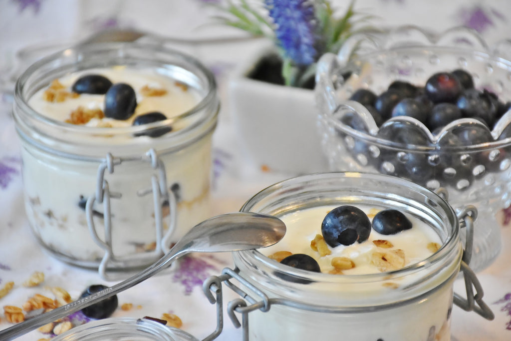 the connection between fermented foods and digestive