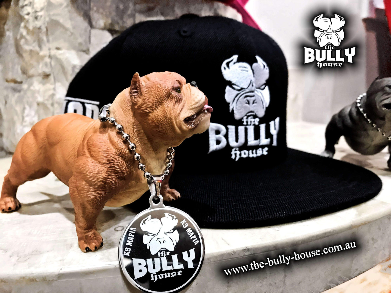 The Bully House - HARDCORE SNAPBACK - CAPS