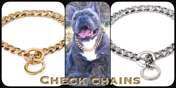 "The Bully House ""CHECK CHAIN Collection"" -  GOLD 20mm Wide"