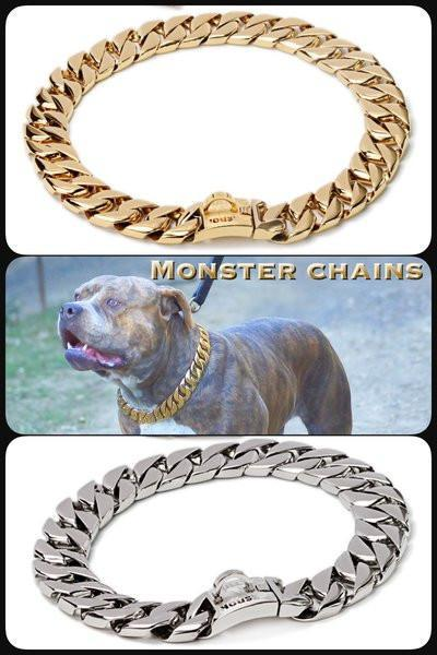 "The Bully House ""MONSTER CHAIN Collection"" GOLD -- 32mm Wide  (INCLUDES FREE EXPRESS POST)"