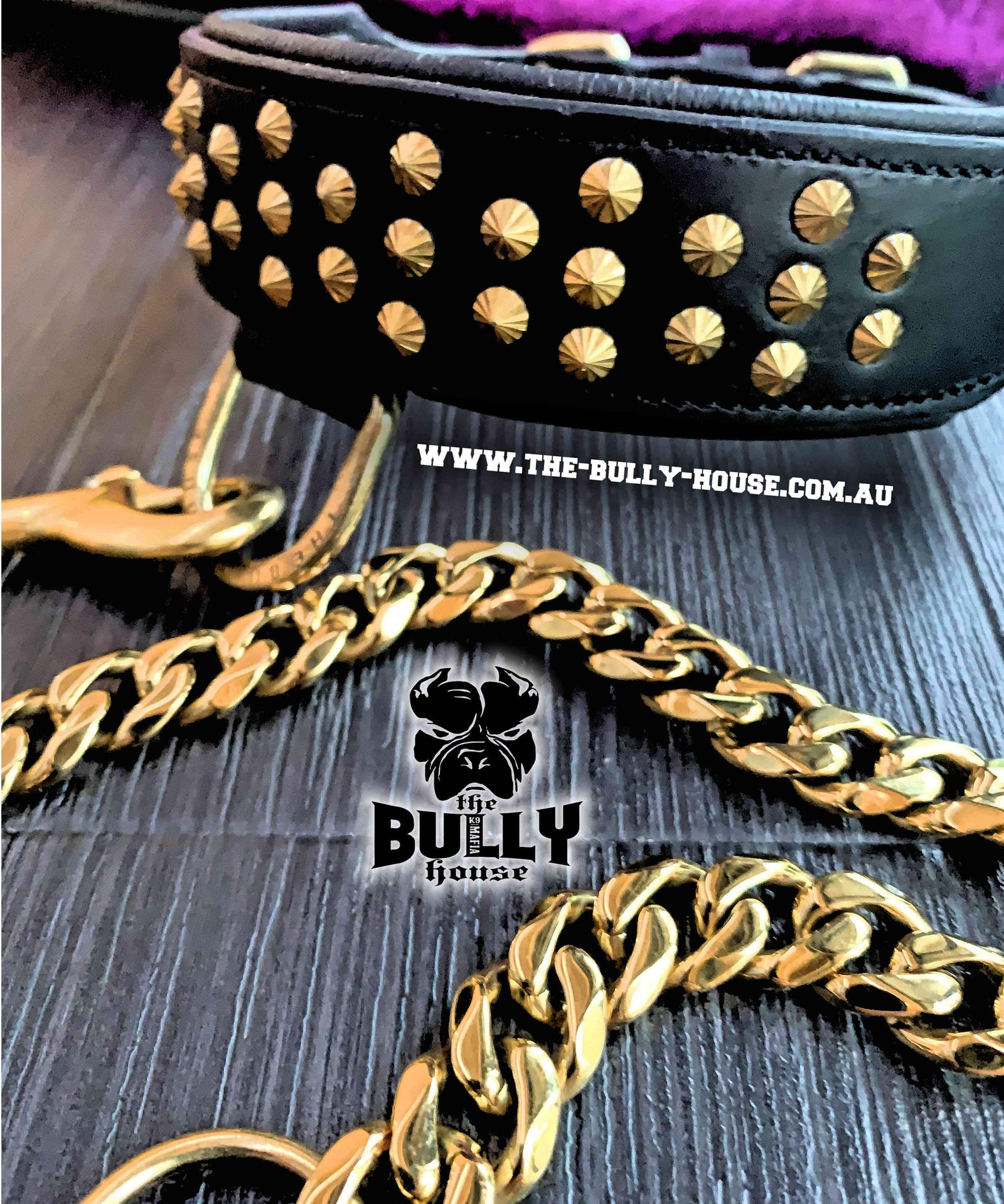 MINI TITAN - Black and Gold - Small Breed and Puppy - FULL Leather