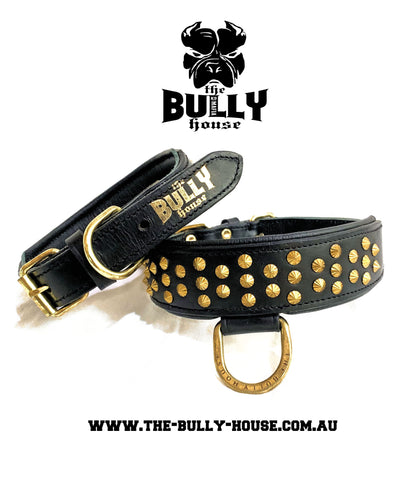 "Dog Collar - ""TinyTuff"" Spiked Leather Collar (SMALL DOG or PUPPY)-- ROGUE ROYALTY (clearance) BLACK"