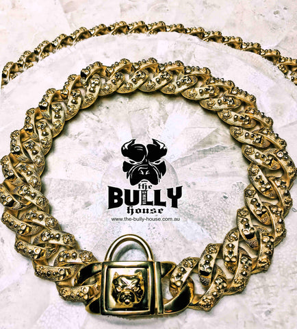 "The Bully House "" - MINI - MONSTER CHAIN Collection"" SILVER -- 25mm Wide"