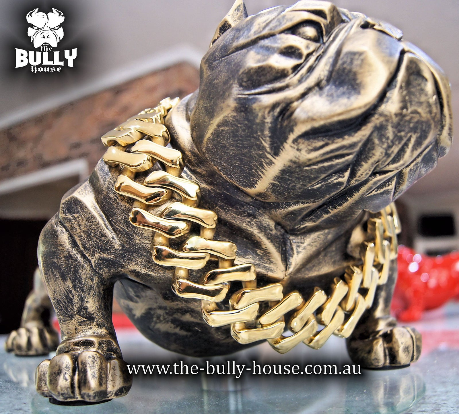 "The Bully House ""BIG GAMBINO Collection"" GOLD -- 32mm Wide  (INCLUDES FREE EXPRESS POST)"