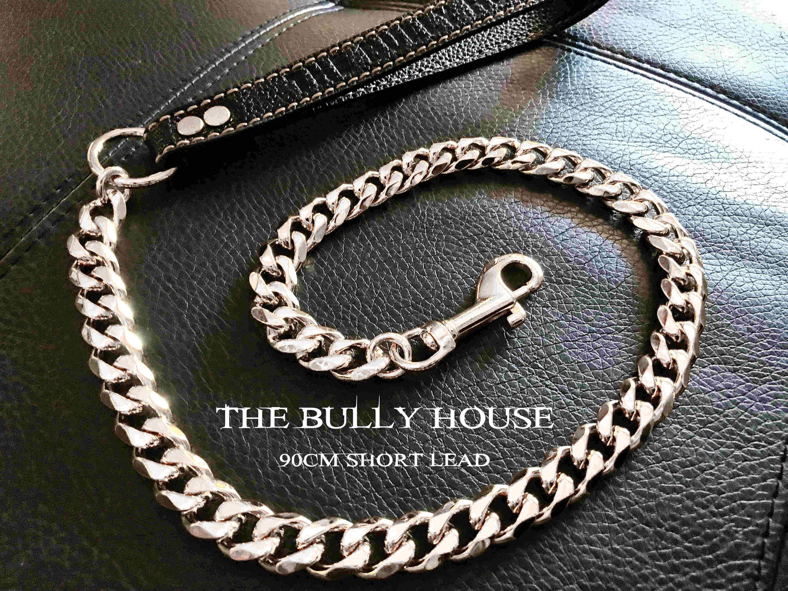 "The Bully House ""LEASH Collection"" SILVER 18mm Wide - 90CM SHORT"