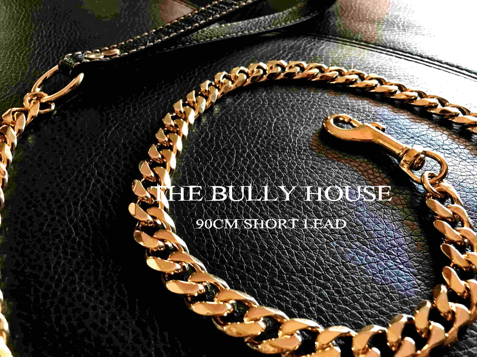 "The Bully House ""LEASH Collection"" GOLD 18mm Wide - 90CM"