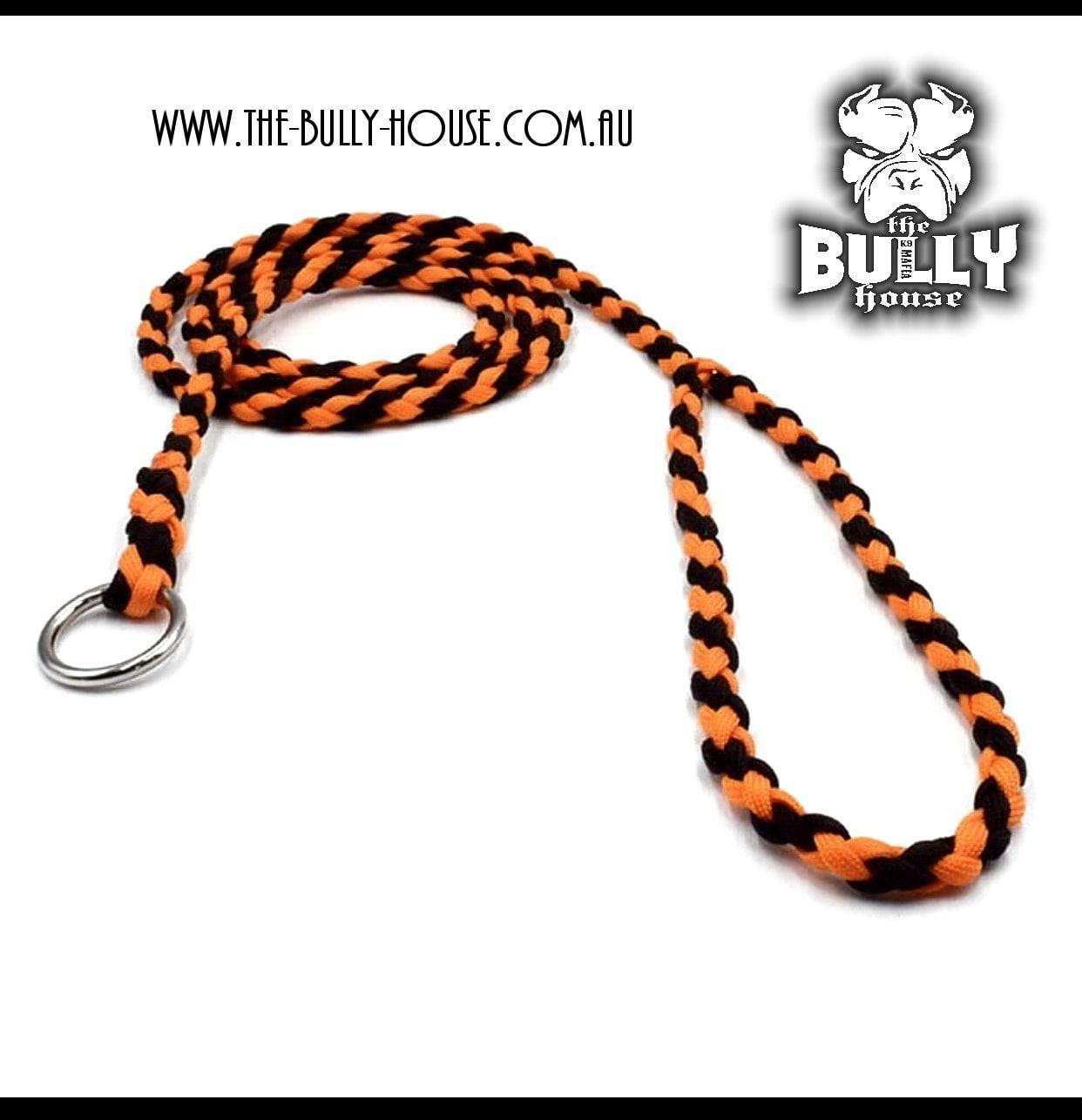 Paracord SLIP LEAD / LEASH (Black and Orange)