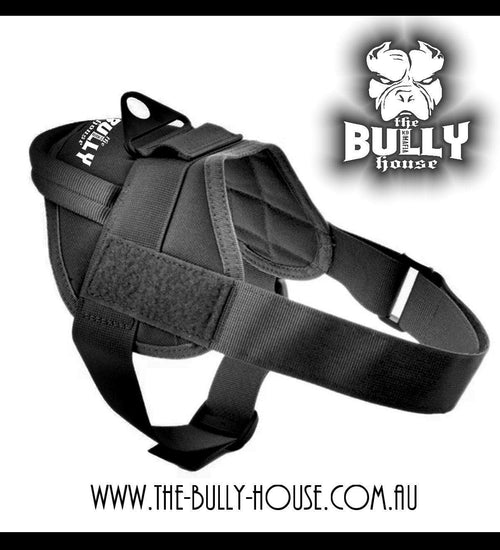 Quick Fit HARNESS Tactical Style (BLACK)