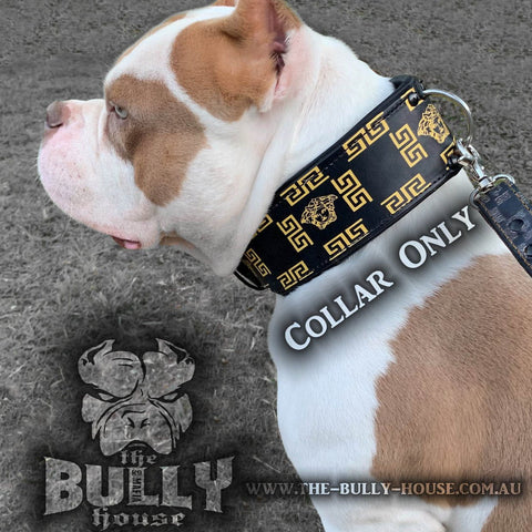 Game Tight - BLACK RHINO Dog Collars -
