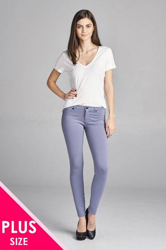 Plus Size Skinny Ponte Pants