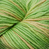 Cascade 220 Super Paints Beach Grass