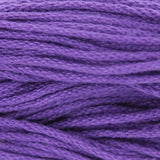 Cotton Classic Bright Purple