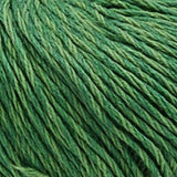 Luxury Cotton Dk Cabbage