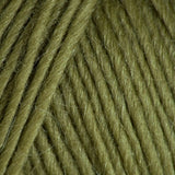 Creative Focus Worsted New Fern