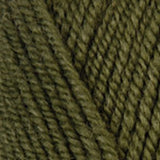 Encore Worsted English Fern
