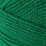 Encore Worsted Christmas Green