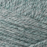 Encore Worsted Light Green Forest Mix