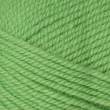 Encore Worsted Rio Lime