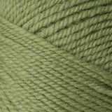 Encore Worsted Green Gremlin