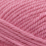 Encore Worsted Carnation