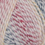 Encore Colorspun Primary Colors