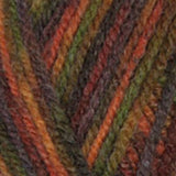 Encore Colorspun Autumn