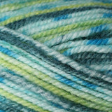 Encore Colorspun Blue Green