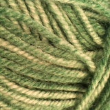 Encore Colorspun Green