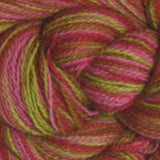 Alpaca Lace Paints Rose Garden