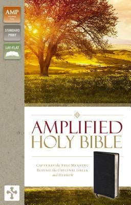Amplified Bible-Am: Captures the Full Meaning Behind the Original Greek and Hebrew by Zondervan