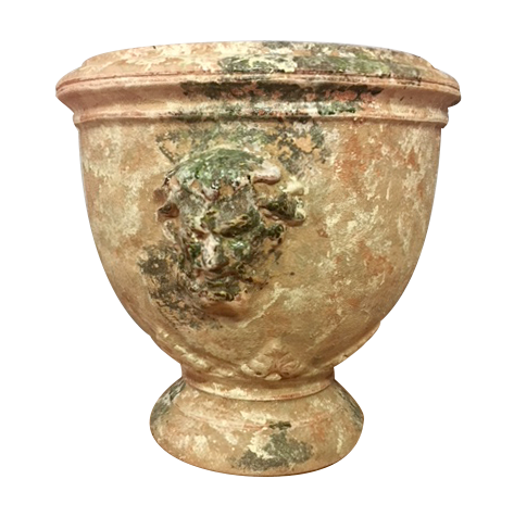 The Anduze Bacchus Cup in Old Antic