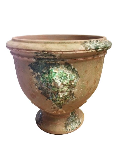 The Bacchus Cup in Antica