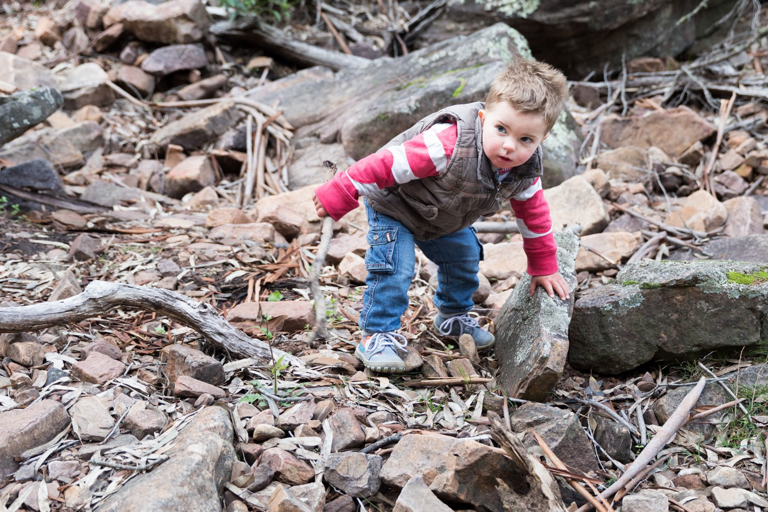Bushwalking with 2-year-olds